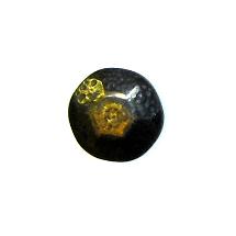 DEC-ANT-Decorative-Antique-Brass-Nail-1