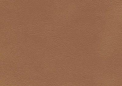 Beechwood (ESS-6339)