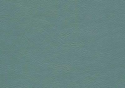 Mt Lt Turquoise (ESS-2929)
