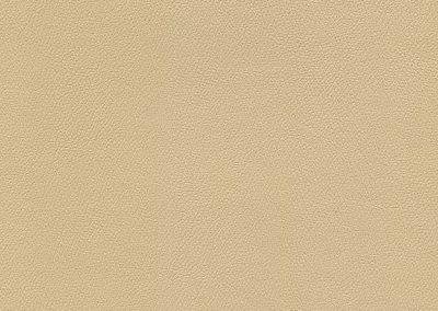 Camel IND-8606