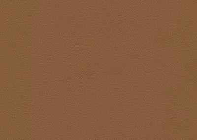 Cinnamon IND-8608