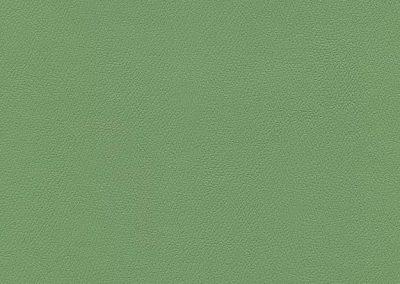 Leaf Green IND-8621