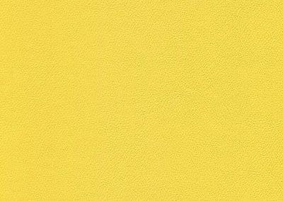 Lemon Peel IND-8415