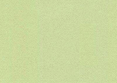 Light Lime IND-8623