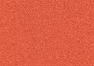 Mandarin IND-8625