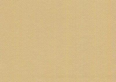 Parchment IND-8628