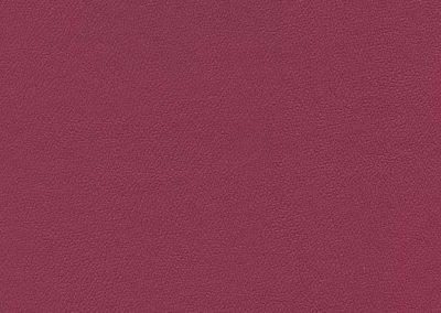 Rasberry IND-8631