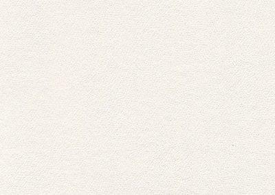 Snow-White-IND-8413