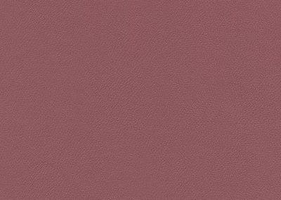 Tea Rose IND-8565